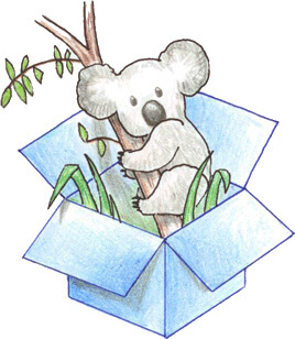Dropbox Koala