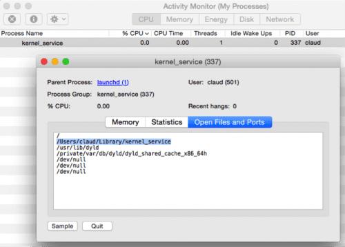 """Im Screenshot sieht man den Hauptprozess """"kernel_service"""" des Trojaners KeyRanger."""
