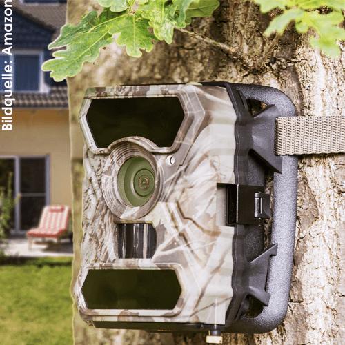 Eine Wildkamera mit Nachtsicht Funktion eignet sich für die Wildbeobachtung, aber auch zur Gebäude- und Grundstückssicherung. Durch den Bewegungssensor nimmt eine Wildkamera zuverlässig Bilder und Videos auf, sobald sich Tiere oder Menschen im Sichtfeld bewegen - ideal als Überwachungskamera!