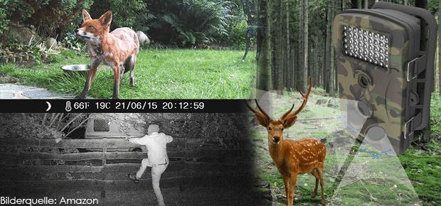 Wildkamera Fotofalle Überwachungskamera - Eine Wildkamera mit Nachtsicht Funktion eignet sich für die Wildbeobachtung, aber auch zur Gebäude- und Grundstückssicherung. Durch den Bewegungssensor nimmt eine Wildkamera zuverlässig Bilder und Videos auf, sobald sich Tiere oder Menschen im Sichtfeld bewegen - ideal als Überwachungskamera!