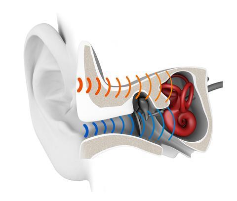 Erklärung der Knochenschall-Übertragung: Normalerweise gehen Schallwellen den blauen Weg. Die Knochenschall-Kopfhörer wählen den Weg über Haut und Knochen – hier rot eingezeichnet (Grafik: AfterShokz).