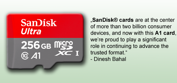 SanDisk Ultra 256 GB microSD Class 10 Karte mit Application Performance Class Standard A1