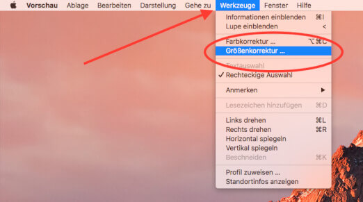 """Unter """"Werkzeuge"""" -> """"Größenkorrektur"""" ruft man das Dialogfenster auf, über das die neuen Bildgrößen eingestellt werden können."""