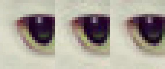 Das zweite Beispielbild im Blogeintrag des Research Teams von Google: 20 x 24 Pixel Grafik, die das Auge einer Katze zeigt. Nicht komprimiert (links), libjpeg komprimiert (Mitte, viele Artefakte), und per Guetzli komprimiert (rechts, weniger Artefakte).