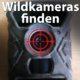 Wildkameras im Wald, Datenschutz, private Fotofalle aufgestellt
