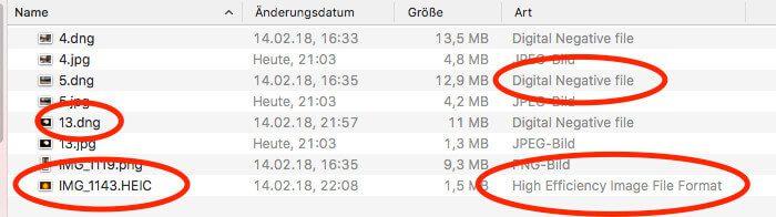 HEIC- und DNG-Dateien lassen sich nur über die Export-Funktion aus der Fotos-App auf den Mac sichern.