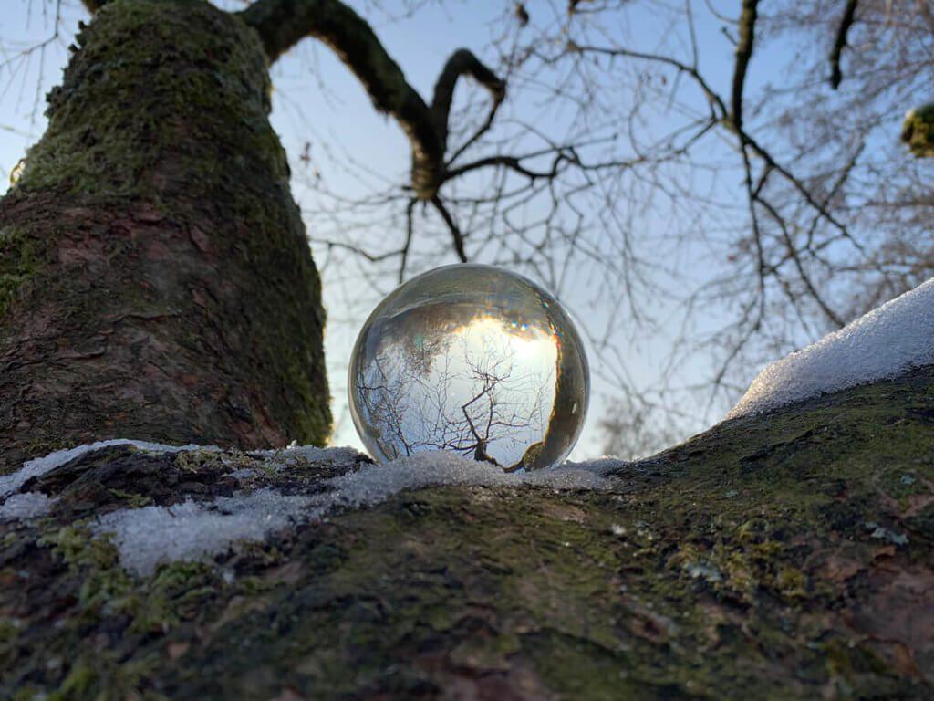 Das war nur ein schneller Test, aber es sieht auch irgendwie interessant aus: Lensball auf einem Baum.