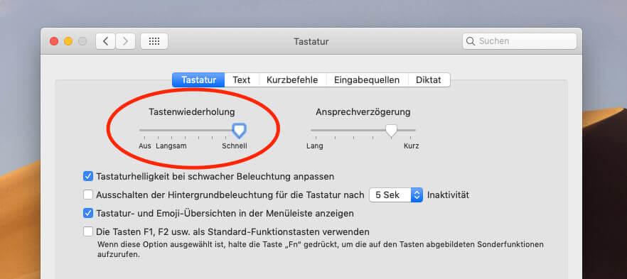 Unter den Systemeinstellungen > Tastatur kann man die Tastenwiederholung wieder auf schnell umstellen.