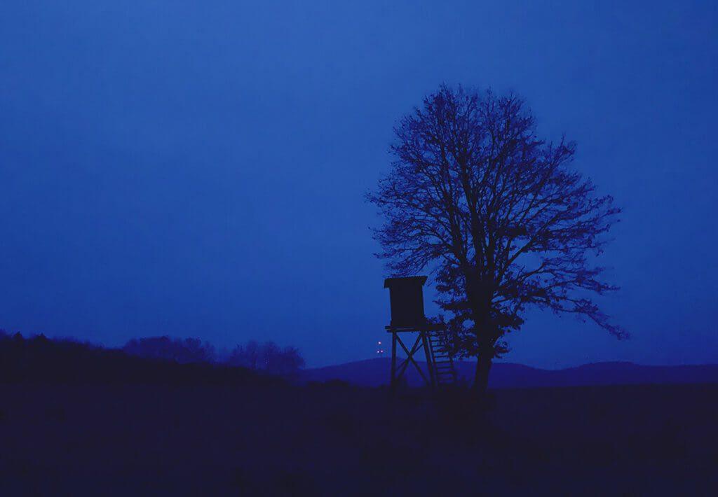 """Dieses Foto habe ich beim Einradfahren geschossen, als es draussen noch gerade mal gedämmert hat. Ich bin überrascht, dass ich aus der Hand fotografieren konnte und trotzdem noch Details wie die Äste des Baumes zu sehen sind. Das Blau habe ich nachträglich verstärkt. Die kleinen orangefarbenen Punkte sind die Beleuchtung des Funkturmes """"Hohes Lohr"""" bei Battenhausen (Foto: Sir Apfelot)-"""
