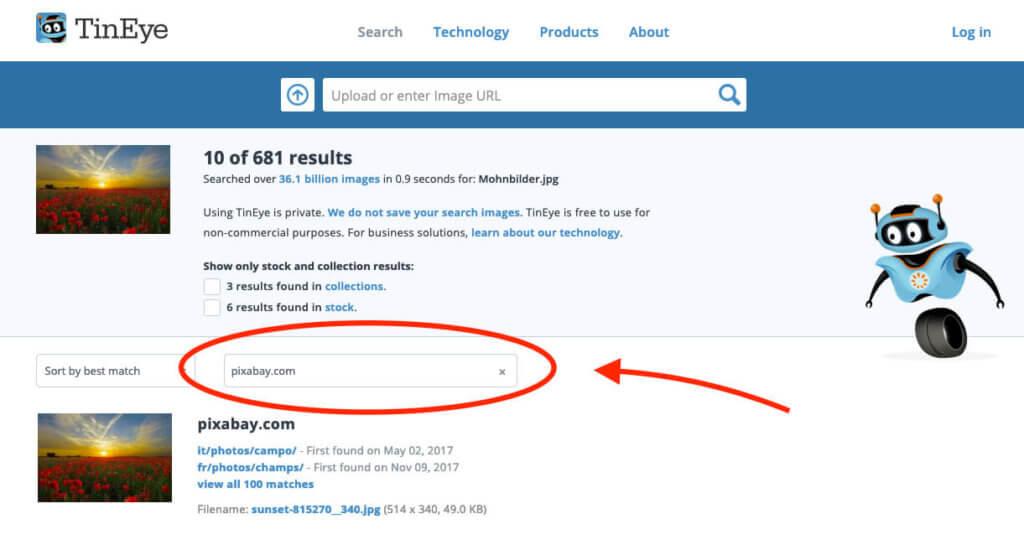 Über den Domainfilter von TinEye lassen sich die Suchergebnisse auf eine Domain begrenzen.