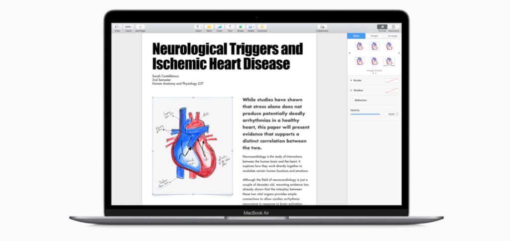 Das neue MacBook Air Mid 2019 ist nicht nur günstiger, sondern hat jetzt auch ein Retina Display mit True Tone-Technologie.