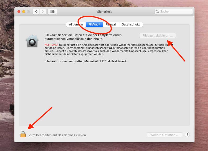 Eine hohe Sicherheit gegen Datenklau bietet die FileVault Verschlüsselung, die Apple implementiert hat. Eine Performance Einbusse durch die Aktivierung konnte ich nicht feststellen.