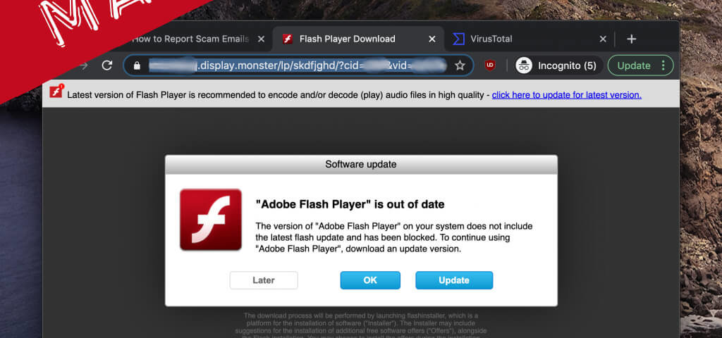 Malware kommt als Flash-Installer