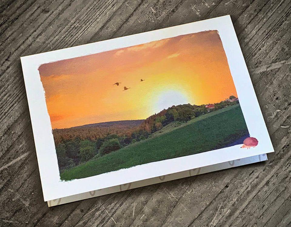 Geburtstagskarten gestalten mit Kaartje2go
