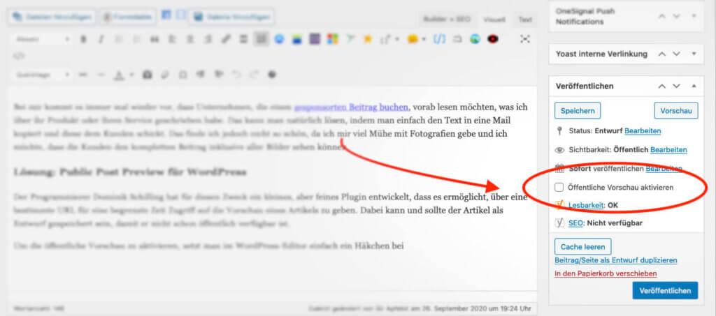 Ist das Plugin in WordPress aktiviert, erscheint rechts in der Veröffentlichen-Box die Möglichkeit, die öffentliche Vorschau einzuschalten.