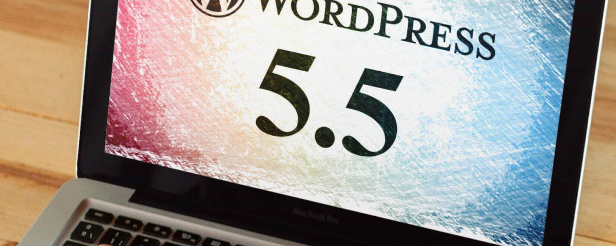 Probleme mit WordPress 5.5