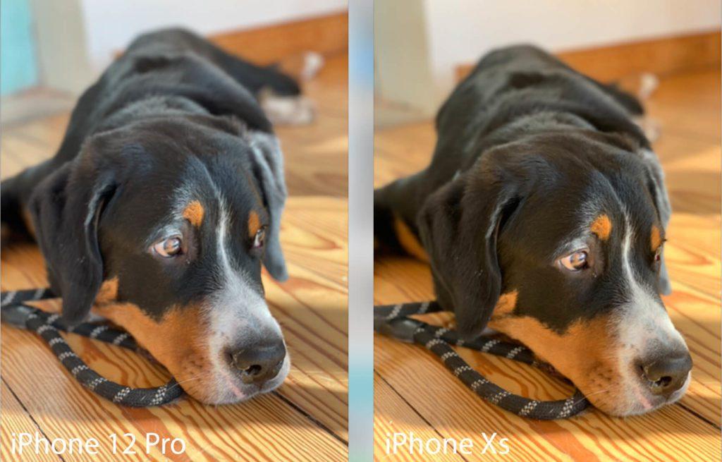 Man glaubt es kaum, aber das Foto links ist mit dem 12 Pro gemacht, während das rechte mit dem Xs fotografiert wurde. In diesem Fall liegt das Xs mit dem Farben eher richtig.