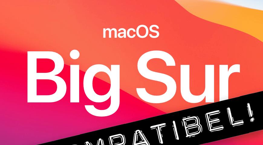Liste von Programmen, die nicht mit macOS Big Sur laufen