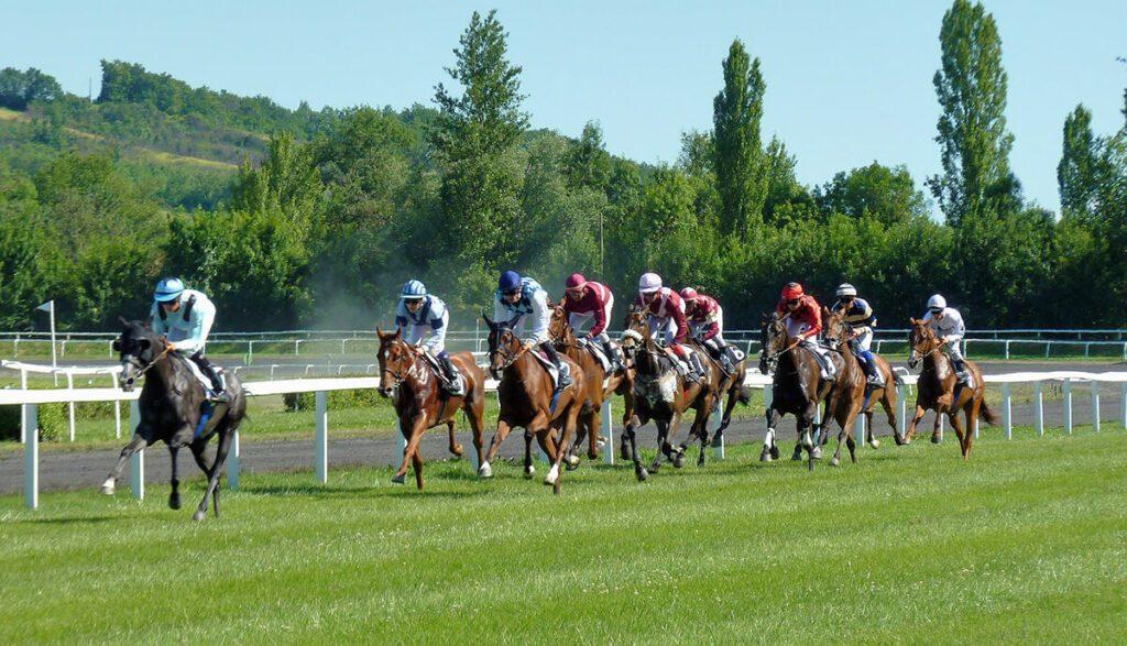 Pferderennen sind ein klassisches Beispiel für Sportwetten. Hier helfen Spekulationen selten, um den Sieger zu tippen (Foto:Jean Louis Tosque/Pixabay).
