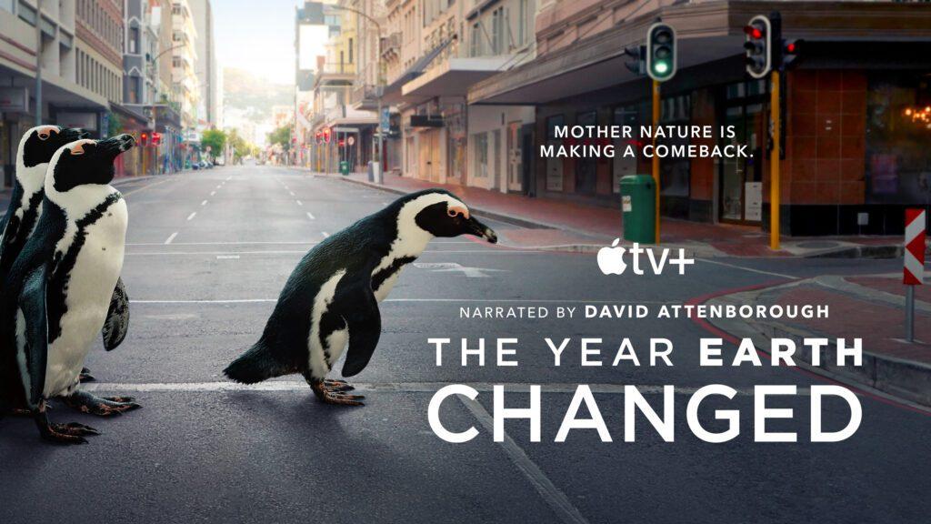"""Die Doku """"Das Jahr, das unsere Erde veränderte"""" (The Year Earth Changed) zeigt ab dem 16. April 2021 bei Apple TV+, wie die Natur weltweit wegen des Corona-Lockdowns ihren Lebensraum zurück zu erobern versuchte."""
