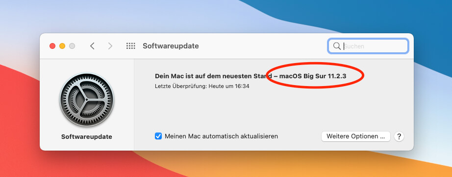 For me, everything continued to run normally after the macOS update to 11.2.3 - so there is no reason to hesitate.